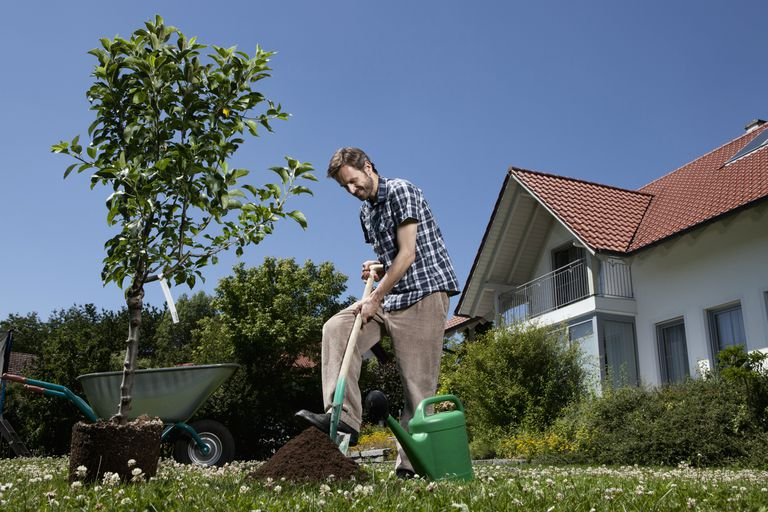 Use good body mechanics when you dig your garden
