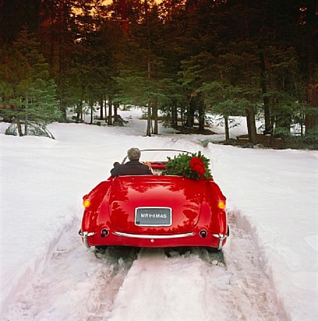 Good Cars For Snow: Can You Drive A Corvette Stingray In The Winter?
