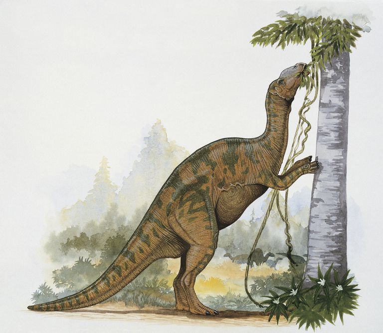hadrosaurus the first identified duck billed dinosaur