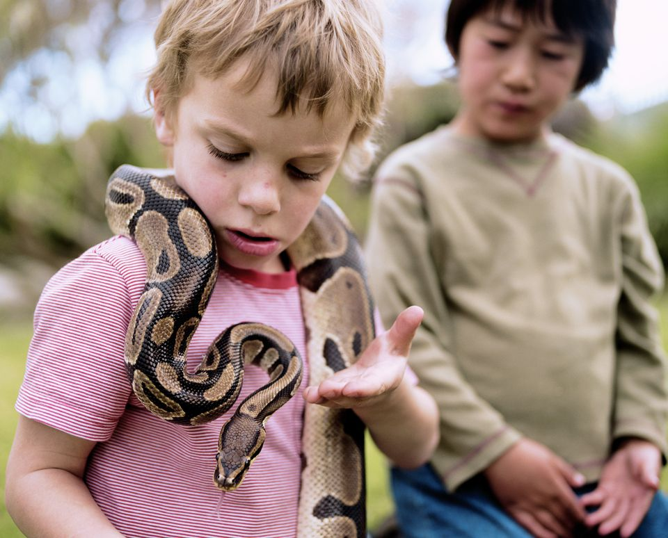 Two boys (5-7) outdoors (focus on boy with Ball python around neck)
