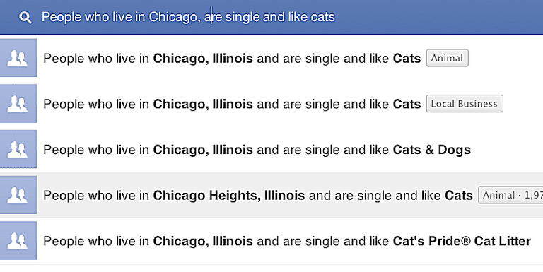 A search for people who like cats on Facebook