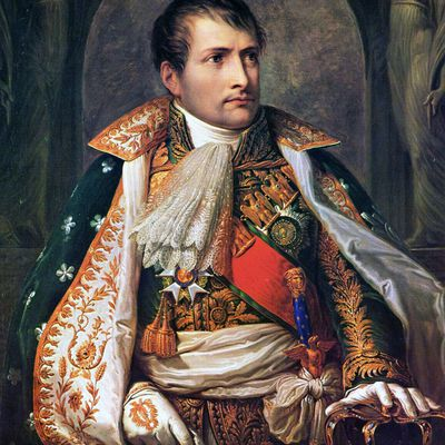 a history of napoleon s continental system napoleon
