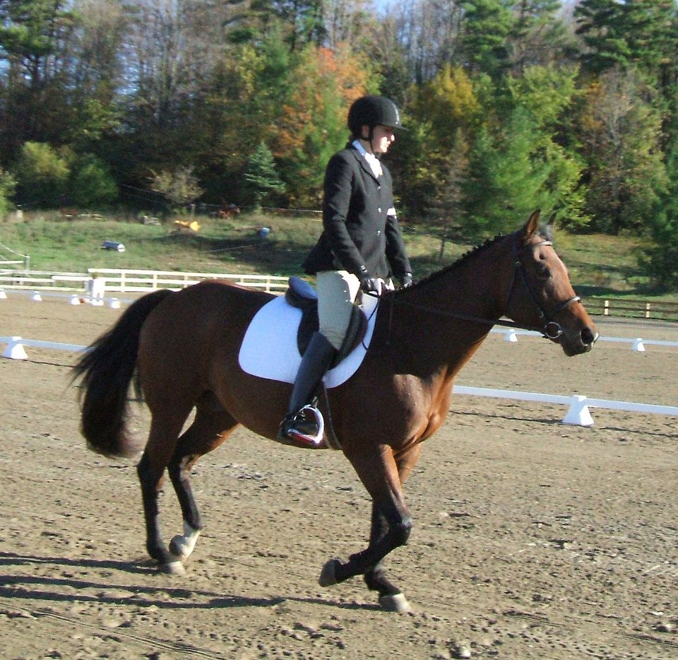 6 reasons why horse riding is good for children | Horse ...
