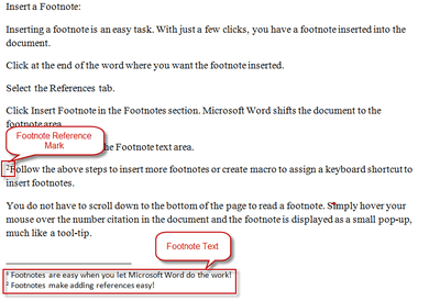 definition and examples of endnotes footnote parts