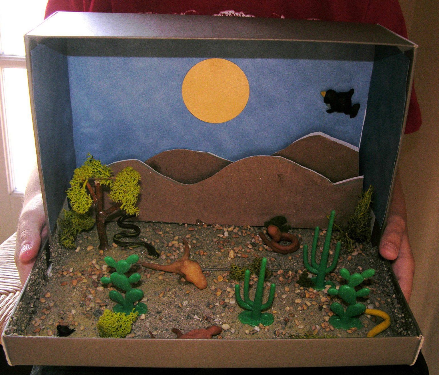 30 Shoe Box Craft Ideas: How To Make A Desert Diorama Craft