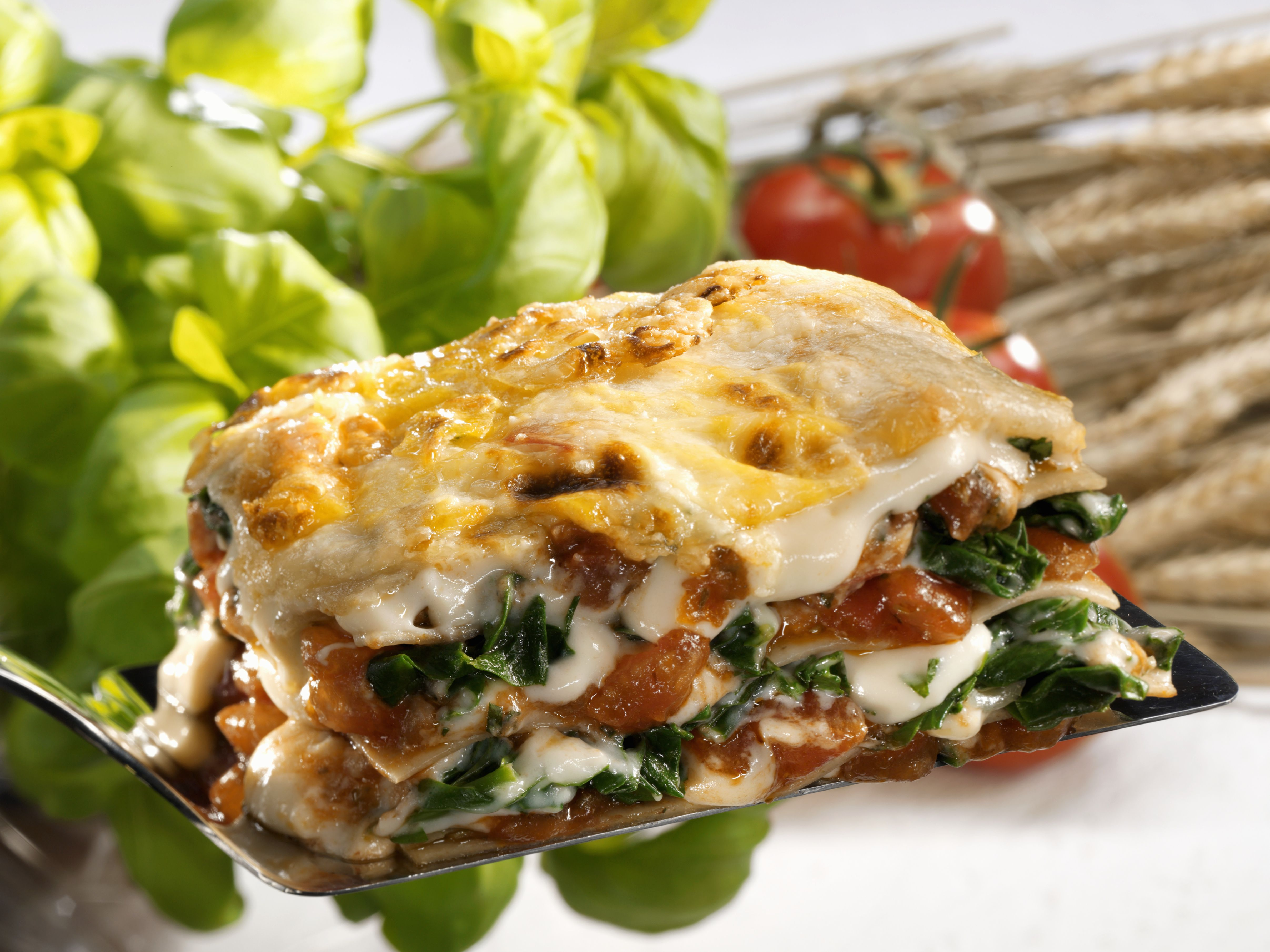 spinach and beef lasagna with ricotta cheese