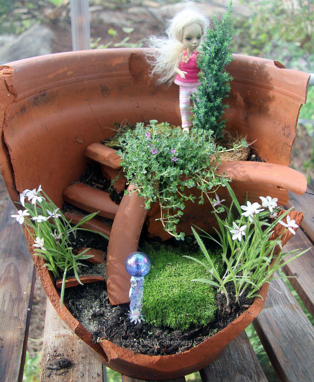 Re use a broken flower pot to make a miniature garden - Miniature plants for fairy gardens ...