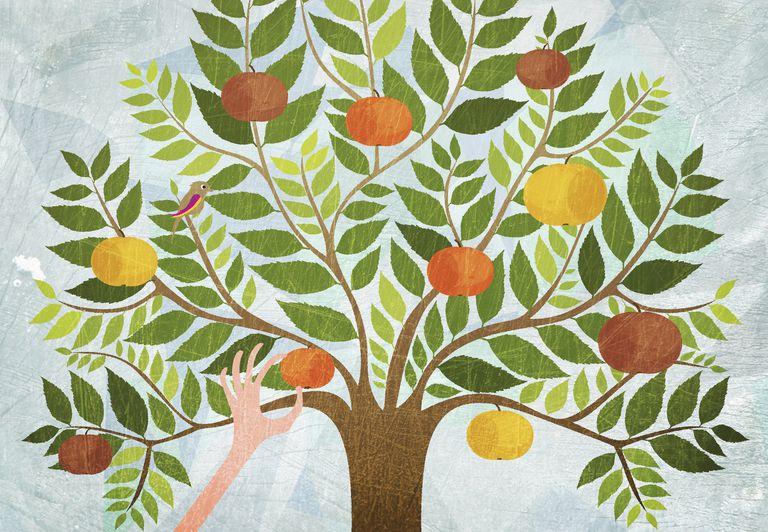 El árbol de manzana