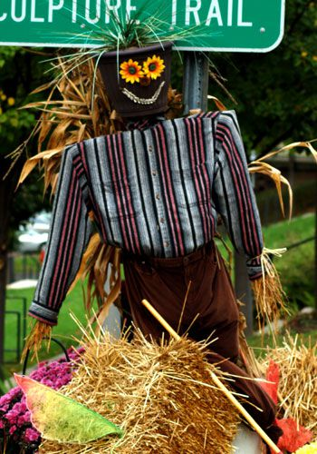 Photo showing scarecrow used as planter. Scarecrow's head a pot holding ornamental grass.