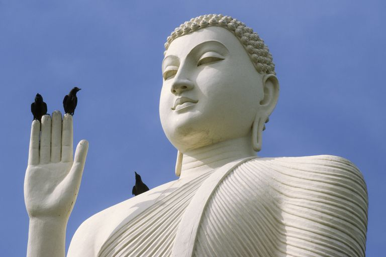 Buddha With Birds
