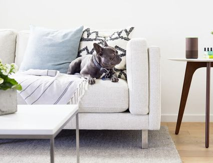 7 Reasons To Declutter Right Now