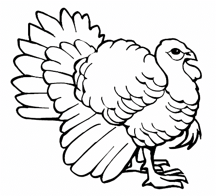 Favorite Sites For Thanksgiving Coloring Pages