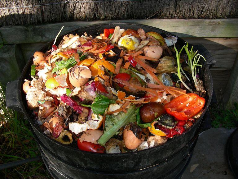 KitchenScraps_DougBeckers_Flickr.jpg