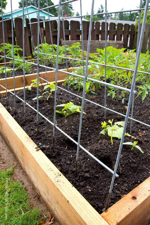 10 Diy Garden Trellises That Cost Less Than 20