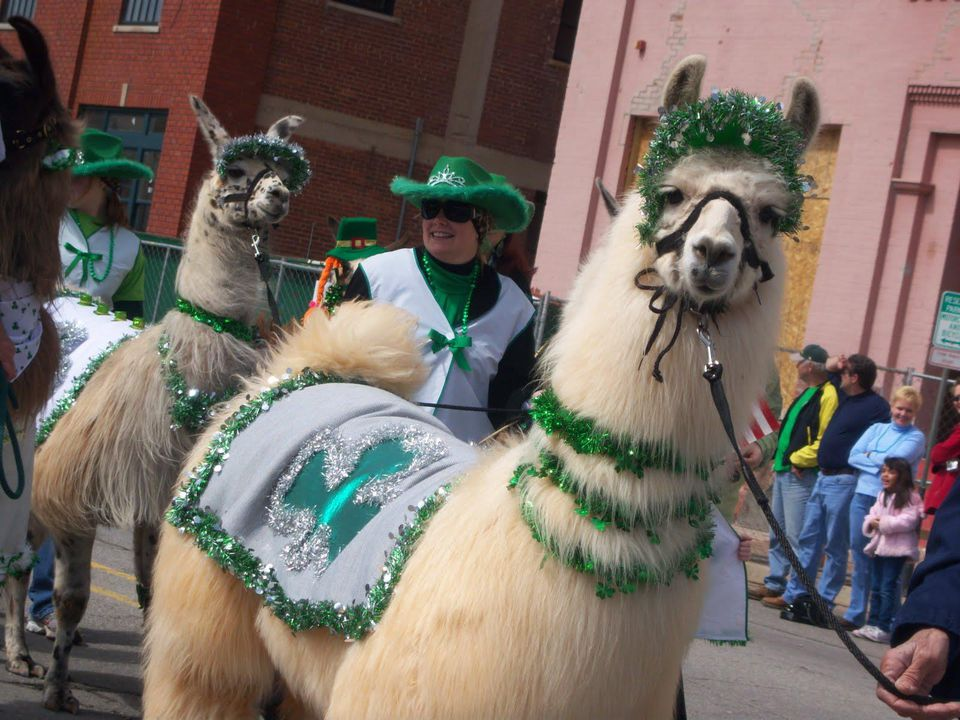 Oklahoma City St. Patrick's Day Parade