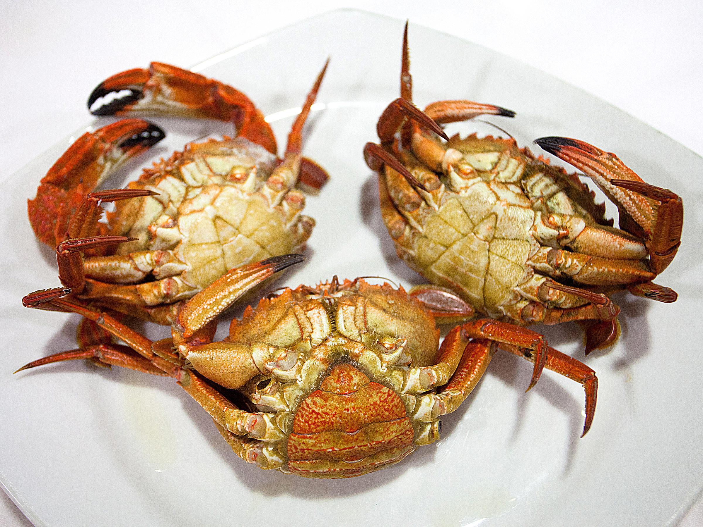 why do some recipes call for she crabs