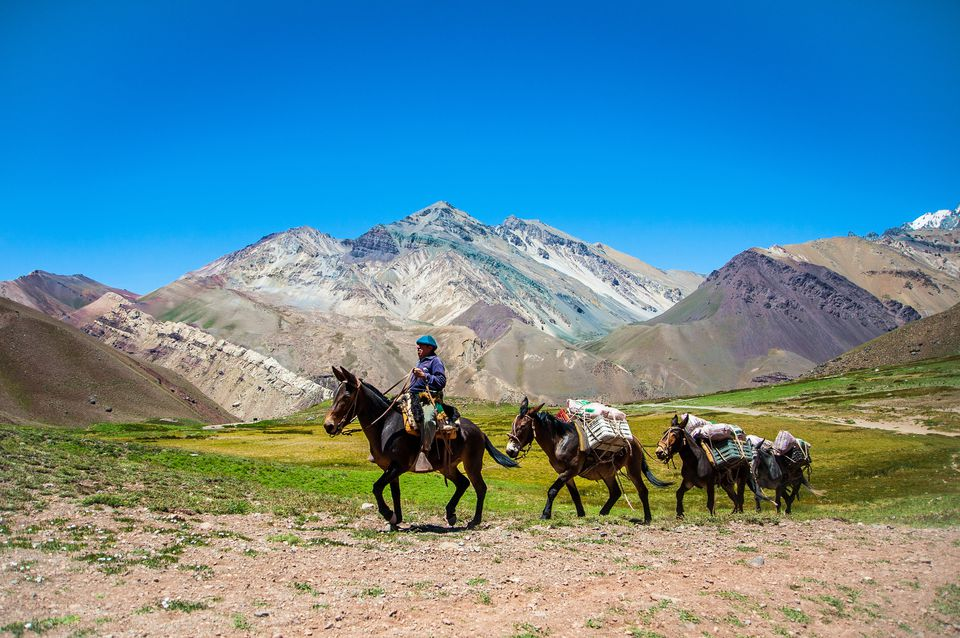 Gaucho riding near the Aconcagua mountain