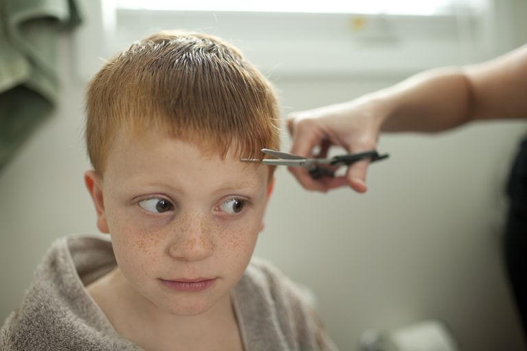 little boy getting haircut