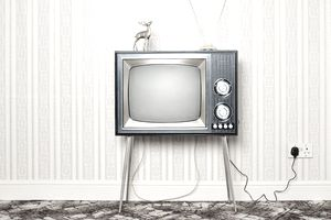 Television and Deer ornament