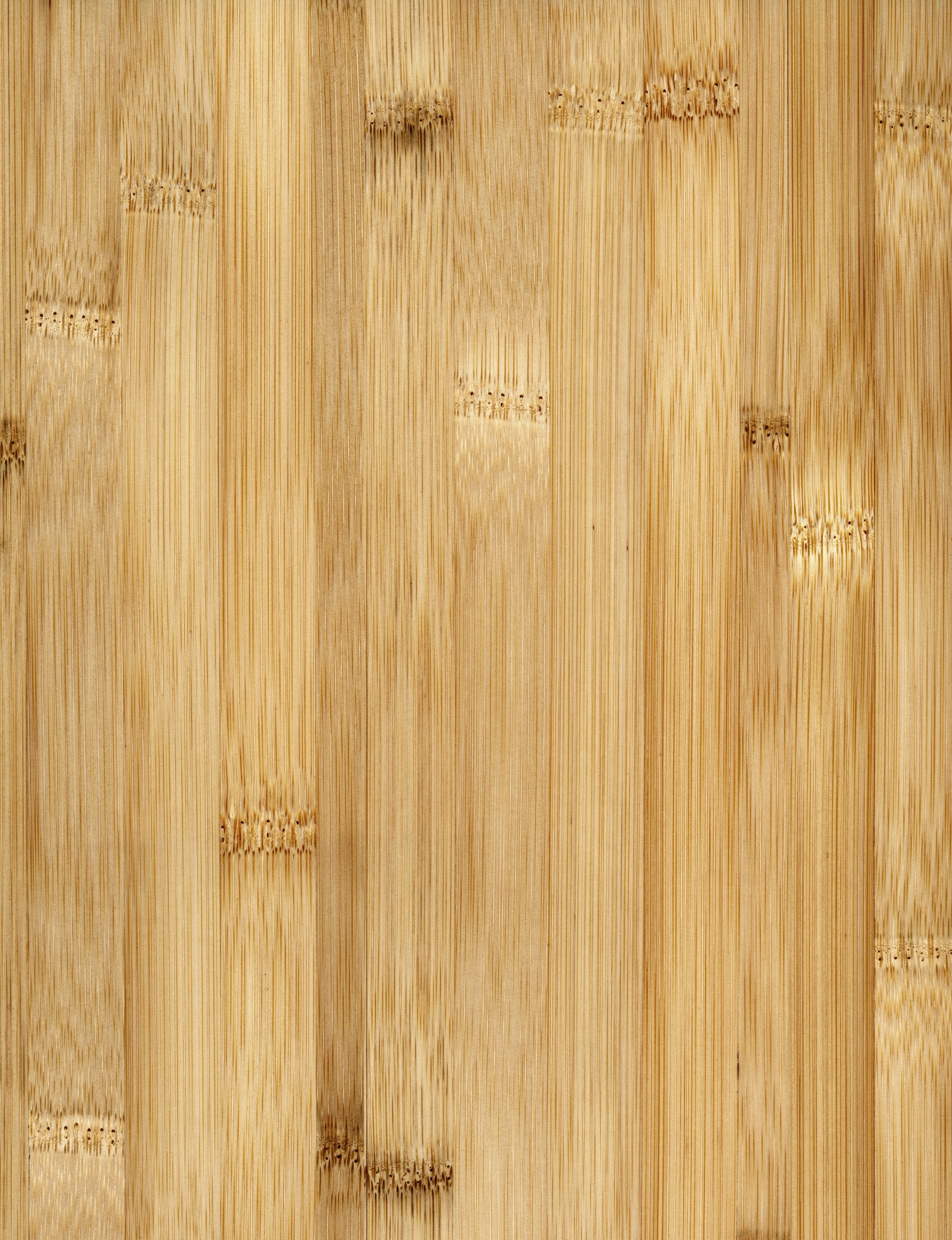 Bamboo Flooring The Basics