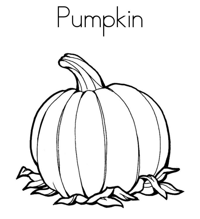 195 pumpkin coloring pages for kids for Pumpkin leaves coloring pages