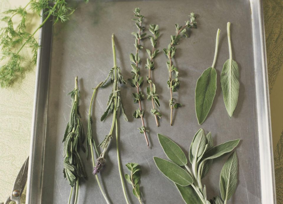 Assortment of herbs
