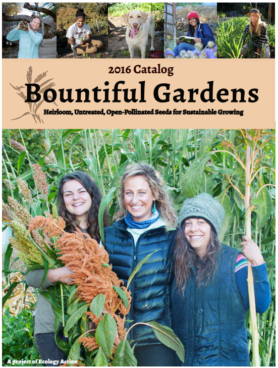 Get Free Seed Catalogs And Plant Catalogs