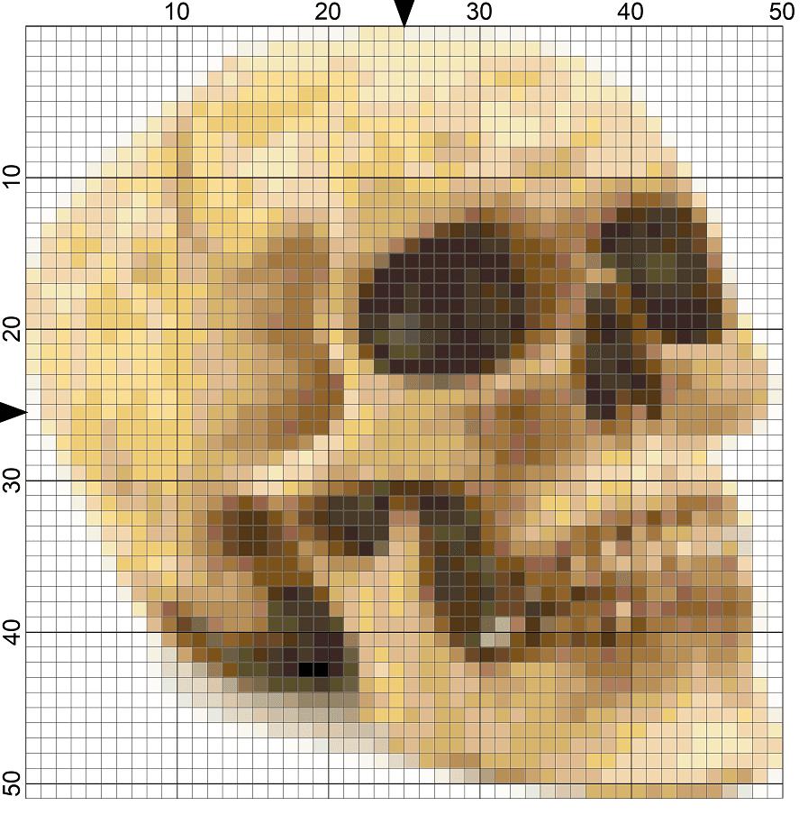 Spooky Halloween Skull Needlepoint Chart