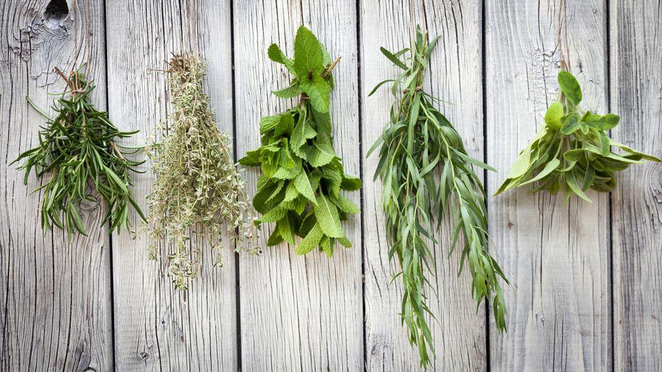 Dried versus fresh herbs