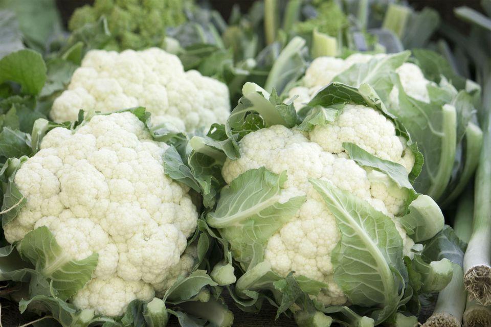 Cauliflowers (Brassica botrytis)
