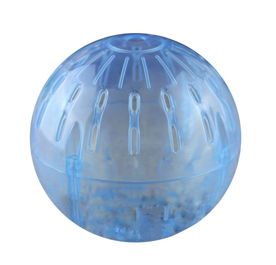 One product all guinea pigs must have guinea pig exercise ball sciox Image collections
