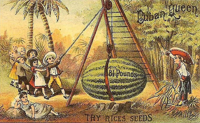 Victorian Trade Card for Rice's Seeds
