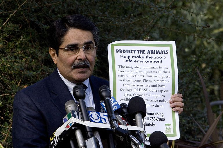 Manuel Mollinedo, director of the San Francisco Zoo, speaks to the news media about the latest developments in the fatal tiger mauling at the zoo January 2, 2008 in San Francisco, California. The zoo will re-open on January 3, 2008 after being closed for more then a week after a fatal tiger attack and will have new signs posted asking people to leave the animals alone and loudspeakers that will inform people to leave at closing time.