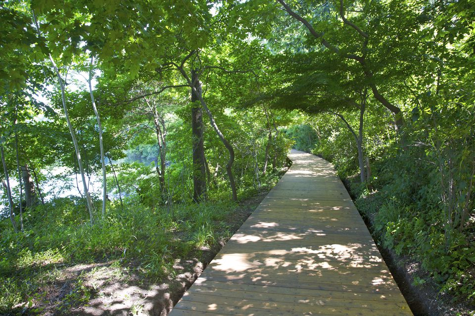 Avalon, public garden, Paul Simons Foundation, Stony Brook, NY, U.S.A.