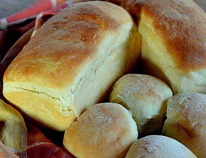 Amish Whole Wheat Bread Recipe