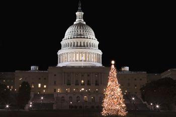 Washington, D.C. Area Christmas Light Displays 2017