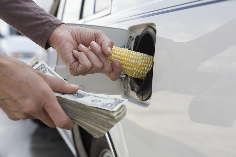 convert to biodiesel technology
