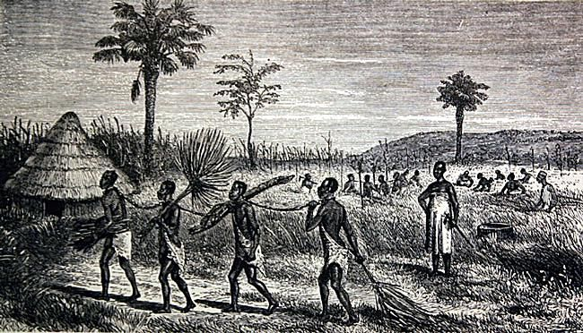Indigenous African Slavery