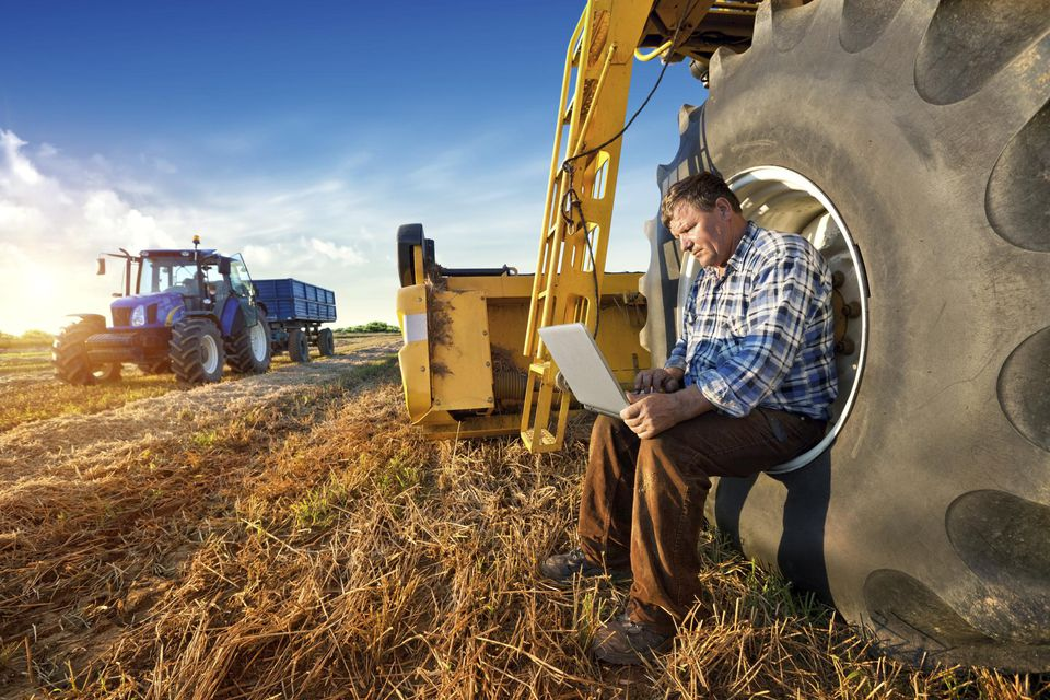 Farmer resting on a tractor wheel on a laptop