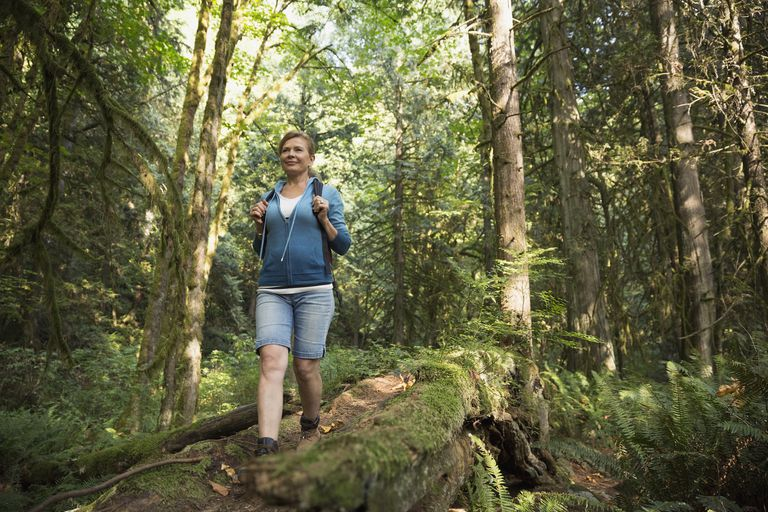 Woman on hiking trails in the woods