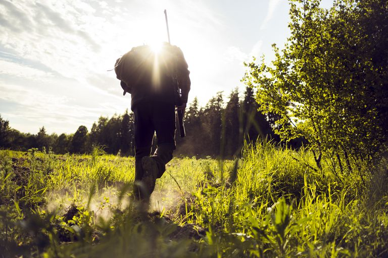 Hunting and care for the environment are compatible