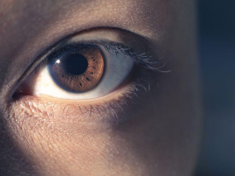 Eye close-up Close-up of woman's eye and eyelashes.