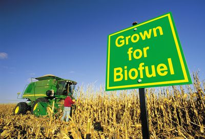 "is biofuel an effective substitute for ""this puts biofuel closer to being a good substitute for fossil fuels,""  conversion  process in a way that is sustainable, cost-effective and clean."