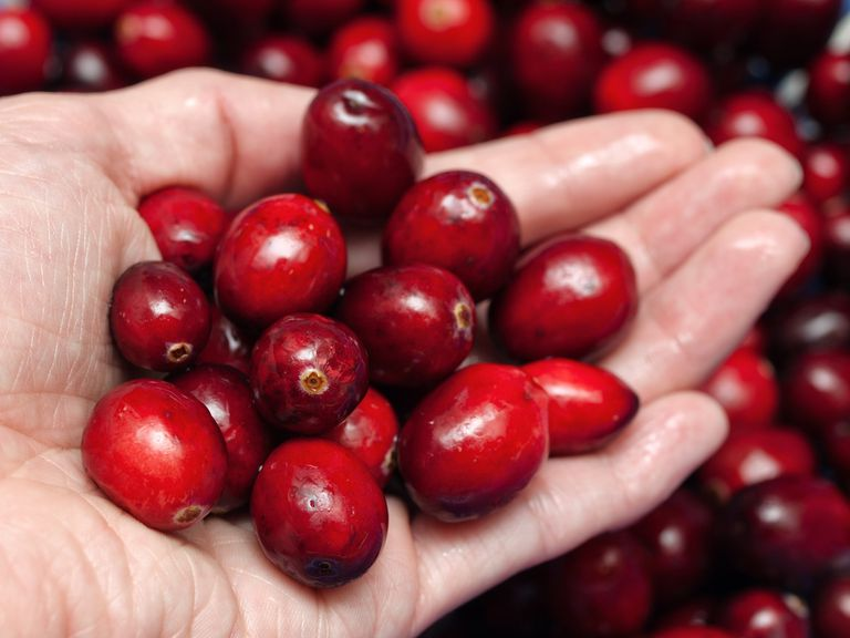 handful of cranberries