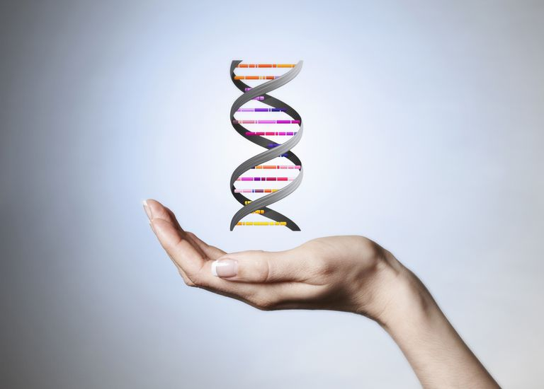 Genetics-Liam-Norris.jpg