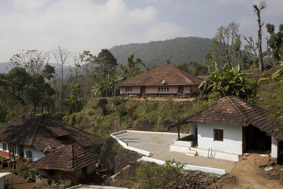 Coffee growers in Coorg, Karnataka