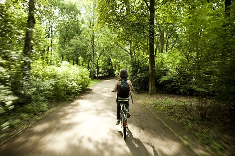 Best Bike Trails In The Washington Dc Area