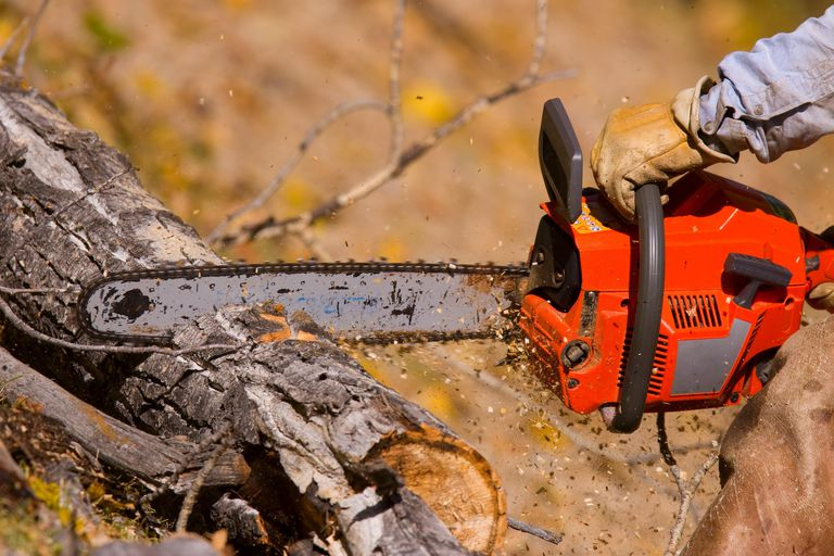 Logging A lumberjack working with a chainsaw.
