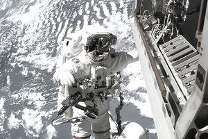 Astronaut Robert L. Curbeam, Jr.