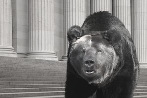 Bear Market Definition